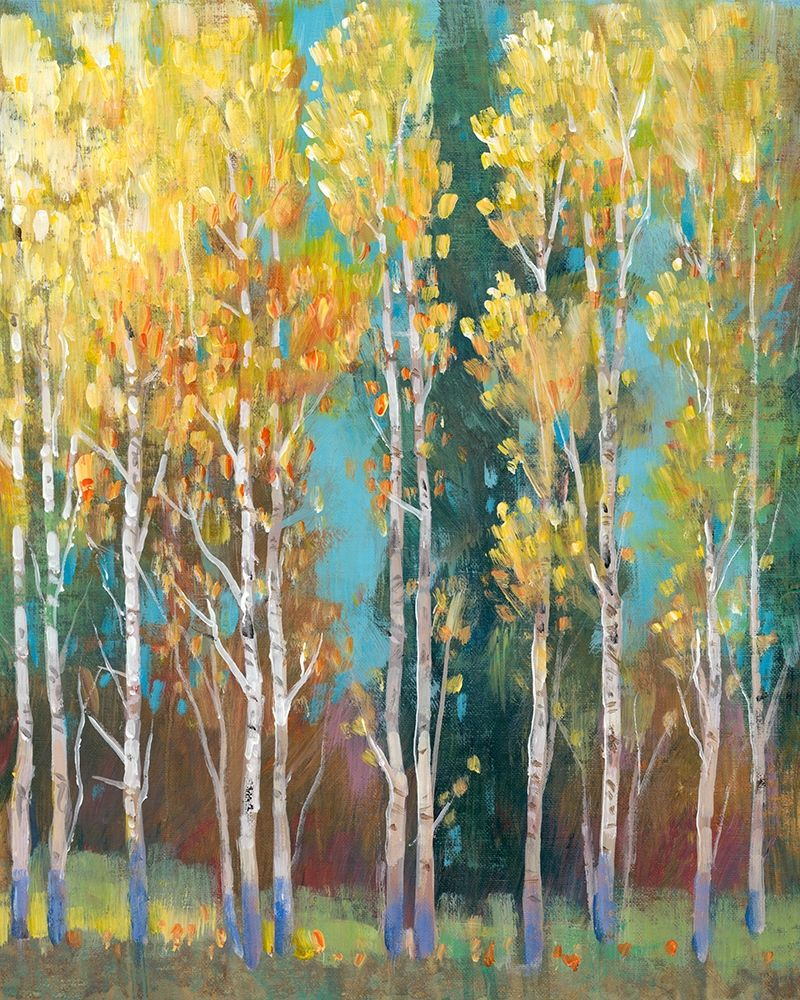 Wall art: Aspen Grove I, by OToole, Tim