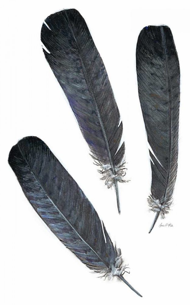 Art Print: Feather Study 2