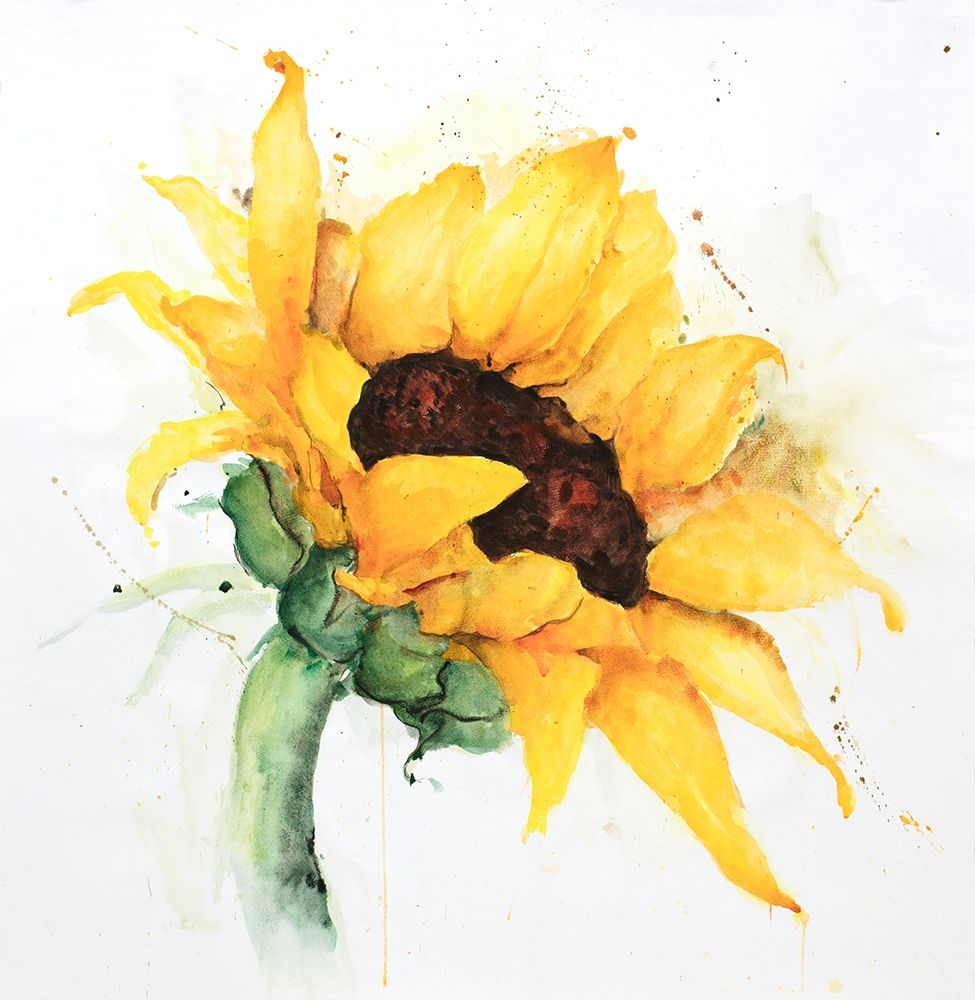 Art Print: WATERCOLOR SUNFLOWER WITH PAINT SPLASH