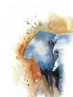 Wall art prints in Animals category